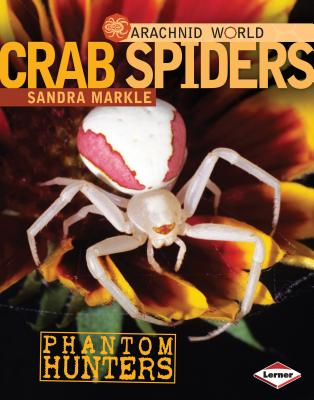 Crab Spiders By Markle, Sandra